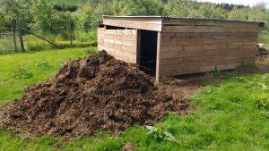 sheep poo pile