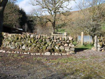 Stone dykes restoration