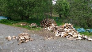 wood chopped