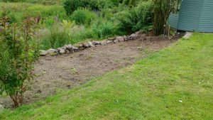 flower bed cleared
