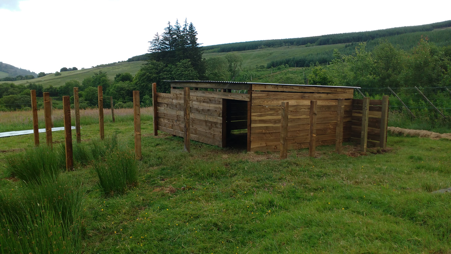 sheep shelter phase 2