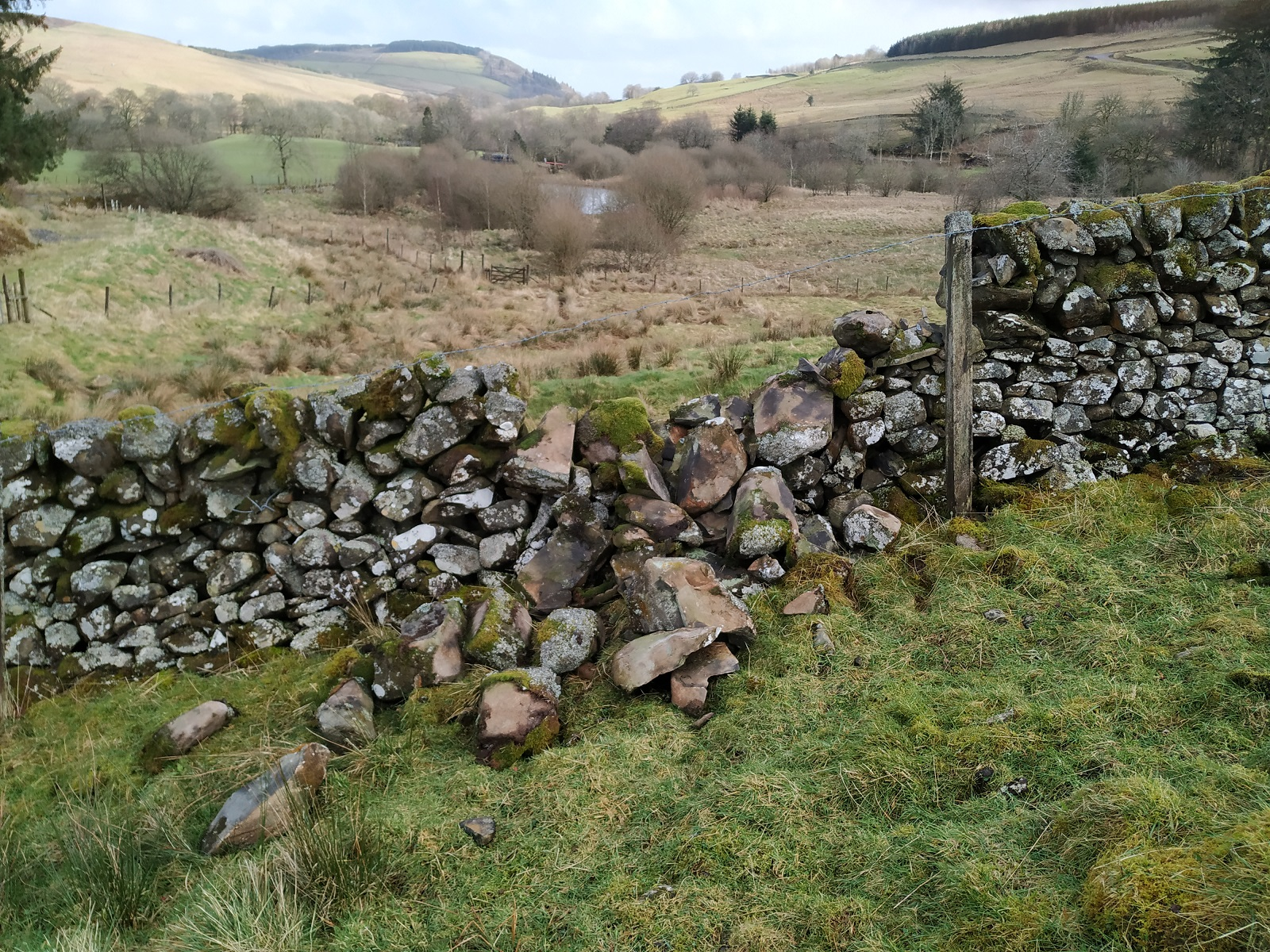 storm damaged stone dyke
