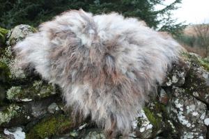 felted fleece rug - Herdwick