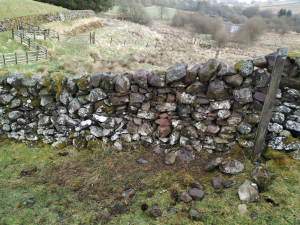 Storm damaged stone dyke repaired