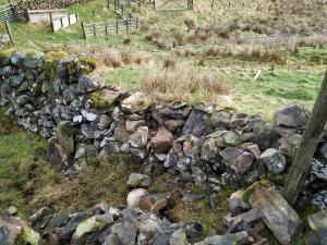 Storm damaged stone dyke