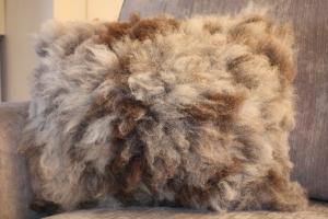 Coloured Ryeland hog cushion (front)