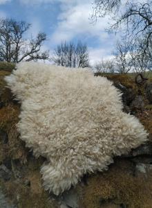 felted fleece rug-Coloured Ryeland-Scarlet-