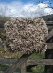 felted fleece rug - Coloured Ryeland - Ynca