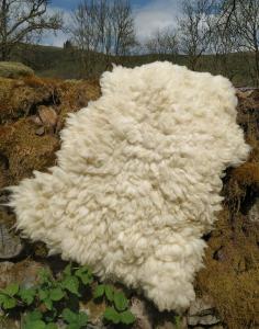 felted fleece rug-Herdwick x Texel