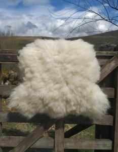 felted fleece rug - Herdwick x Texel