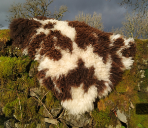felted fleece rug - Jacob