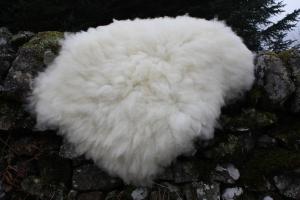felted fleece rug - Mule