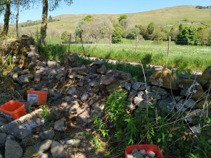 stone dyke by track - disassembled