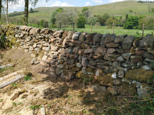 stone dyke by track - complete