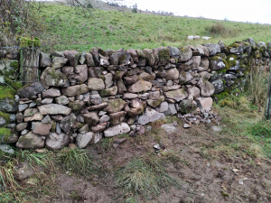 disused gateway rebuilt with stone dyke 4