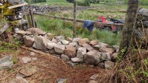 Stone dyke - filling a gap day 3