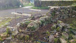 Stone dyke at house rebuilt 1 - start
