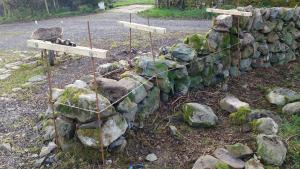 Stone dyke at house rebuilt 2 - rebuild underway