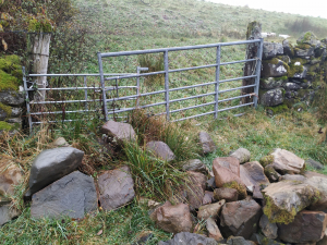 disused gateway rebuilt with stone dyke 1